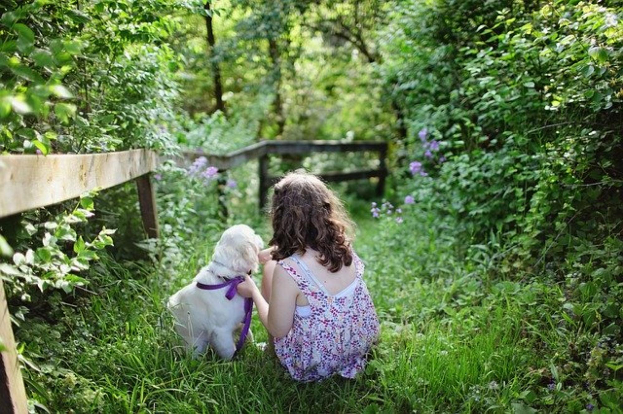 Pies i dziecko. Czy pies pomaga w wychowaniu dziecka?